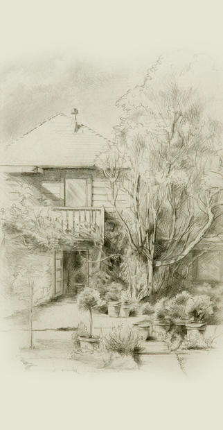 The French Laundry Courtyard Drawing